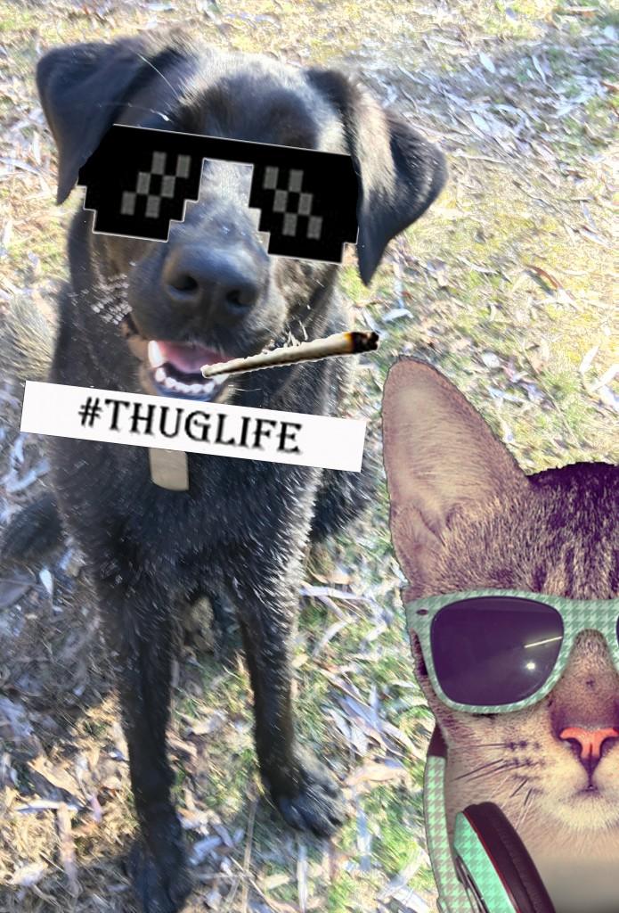 thuglifeFinn