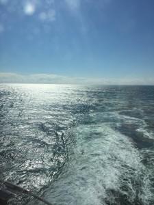 Atlantic ocean, calm